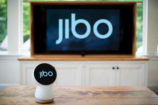 jibo sociale robot