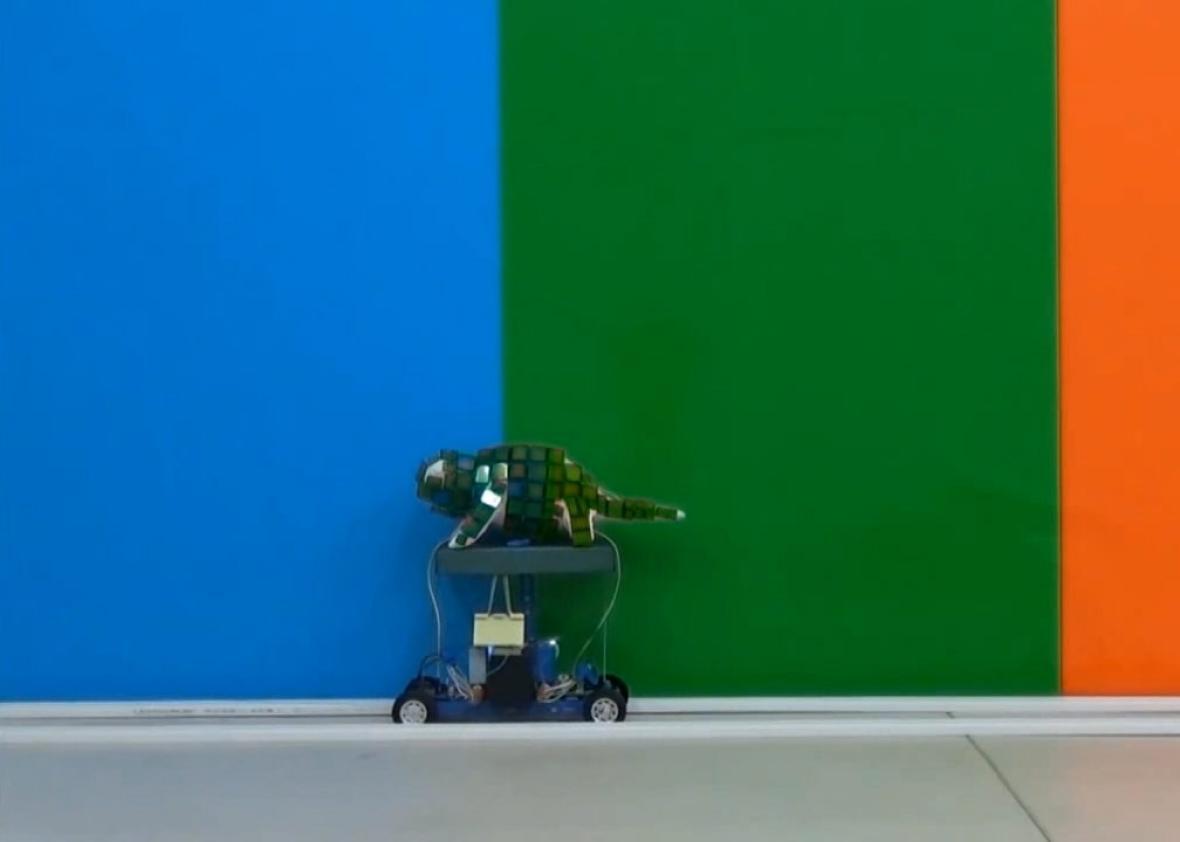 Deze robot verandert van kleur als een kameleon numrush - Kleur voor levende ...
