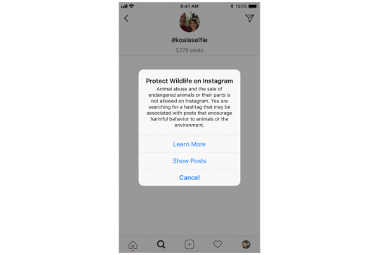 Instagram-wilde-dieren