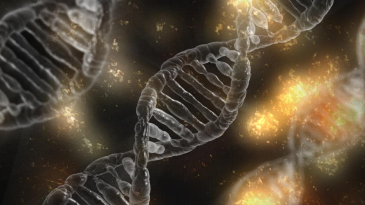 DNA, genetisch manipuleren