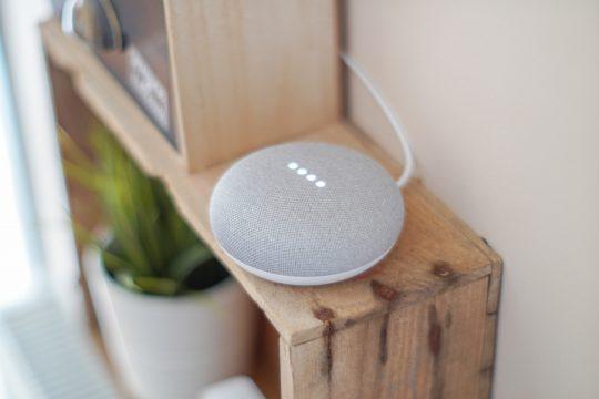 Google Home, Google Assistant
