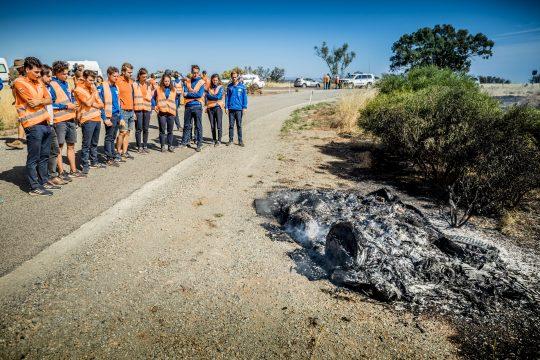Vattenfall Solar Team, World Solar Challenge 2019